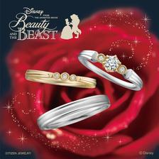 ディズニー 美女と野獣 Belle with Beast~ベル・ウィズ・ビースト~